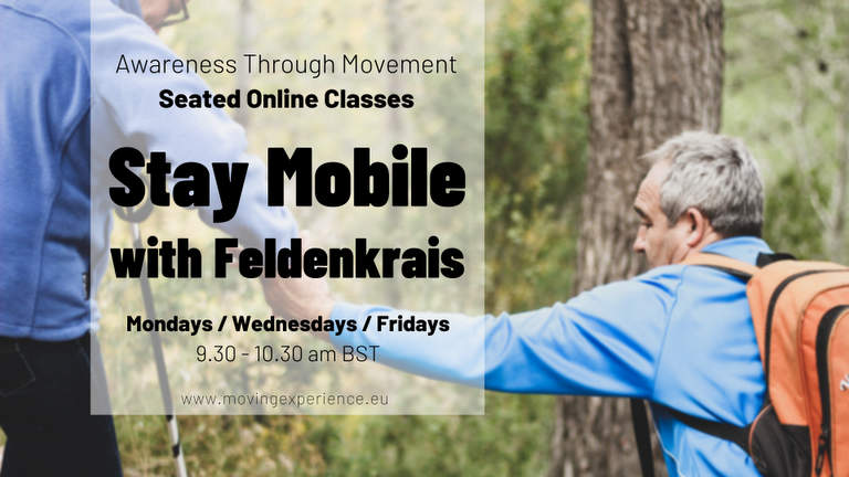 Stay Mobile Feldenkrais Online Classes with Bärbel